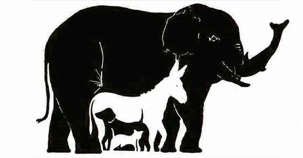 seules les personnes dont le qi est superieur a 120 voient plus de 6 animaux combien en voyez vous 1