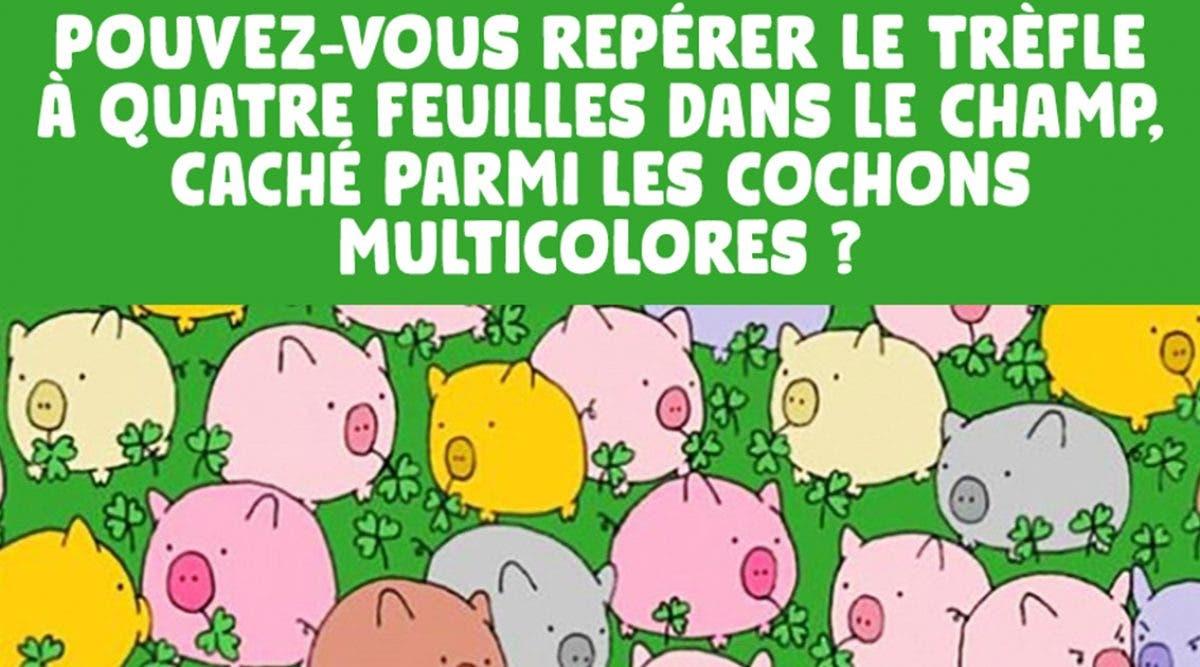 seuls-les-genies-pourront-trouver-le-trefle-a-quatre-feuilles-cache-parmi-les-cochons-multicolores