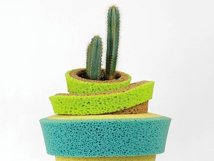 socle humide pour plantes