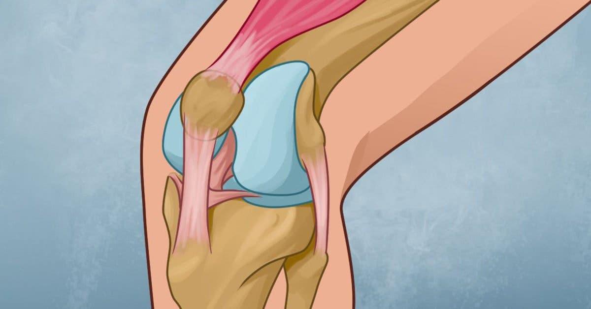 Comment soigner vos genoux et reconstruire la force articulaire ?