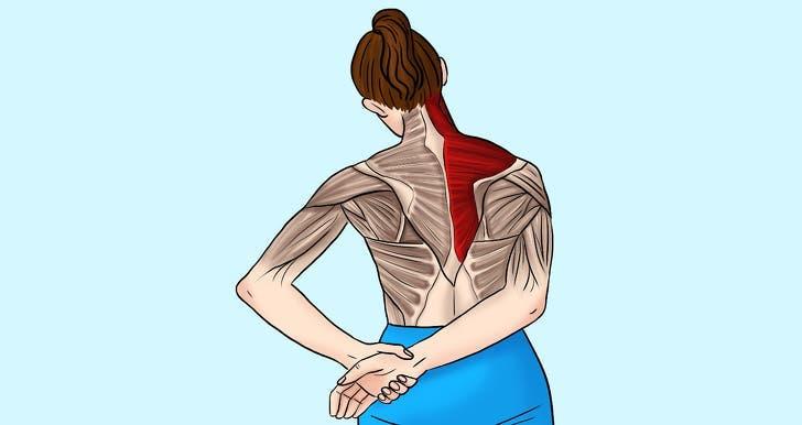 étirements pour soulager les tensions du cou et des épaules