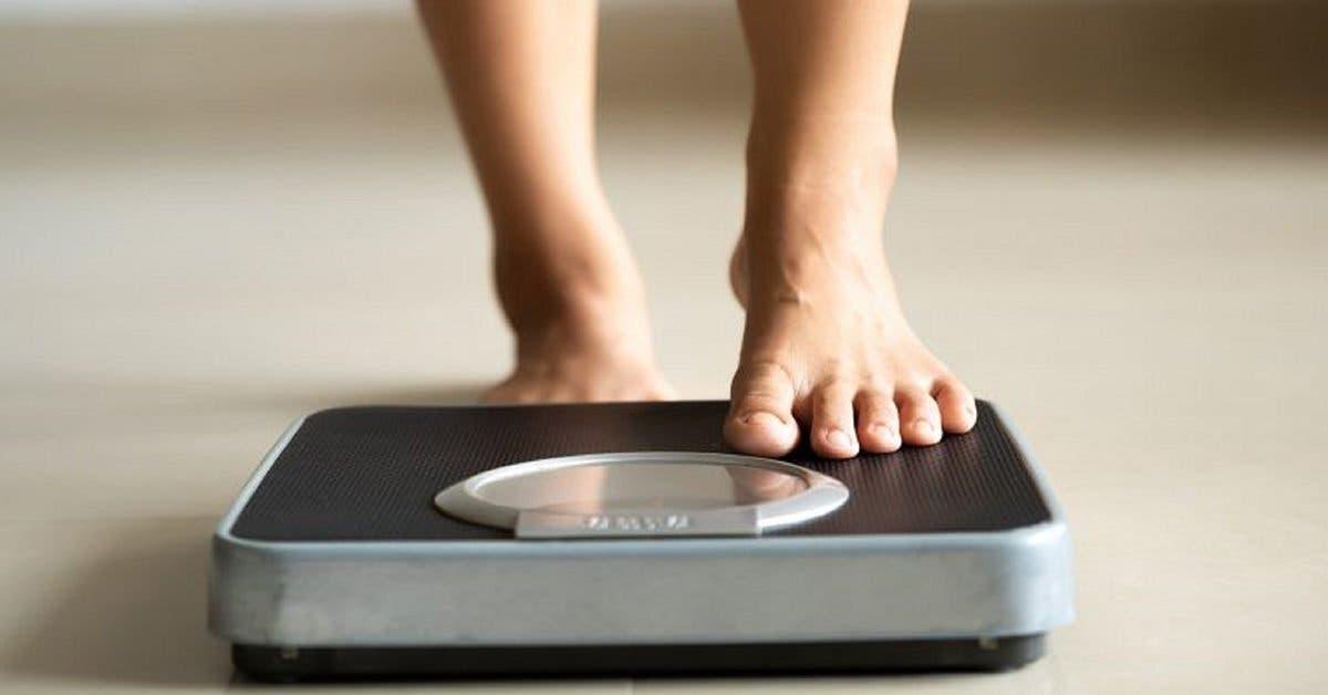 surpoids-et-solutions-naturelles--le-secret-des-cellules-graisseuses-qui-font-maigrir