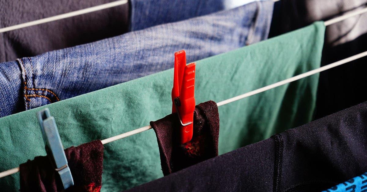 5 recettes maisons pour éliminer les taches de moisissures sur les vêtements