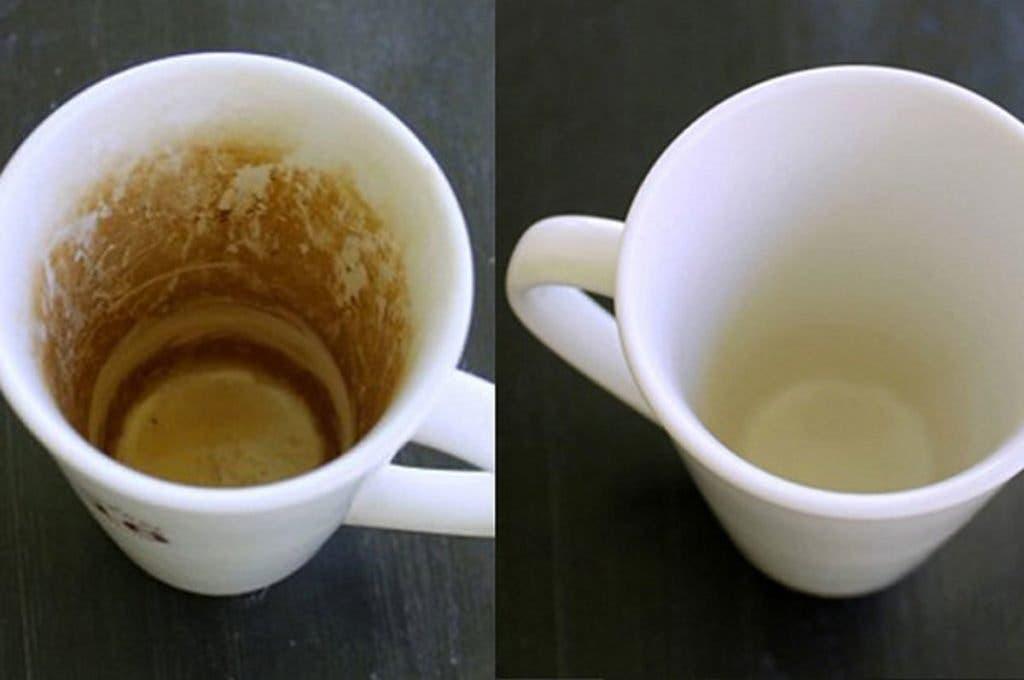 tachesdecafe
