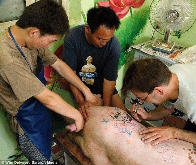 Mobilisons-nous contre les tatouages sur les animaux de compagnies