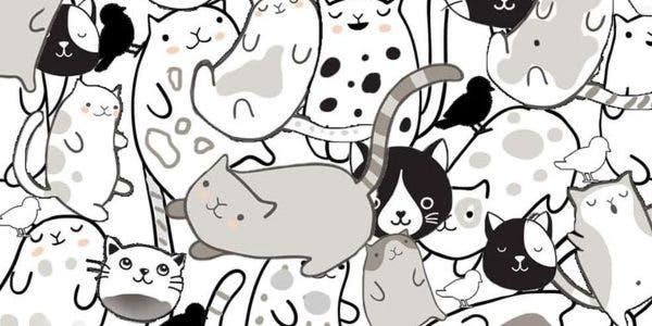 test-amusant-combien-doiseaux-pouvez-vous-trouver-parmi-les-chats-la-plupart-des-gens-peuvent-les-trouver-en-quelques-secondes