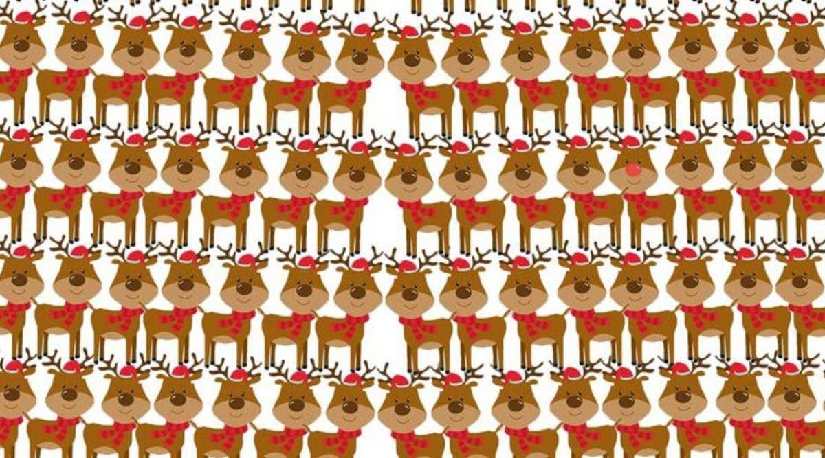 test-amusant-reperez-lintrus-parmi-les-rennes-du-pere-noel