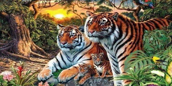test-dobservation--pouvez-vous-voir-les-16-tigres-caches-dans-cette-image