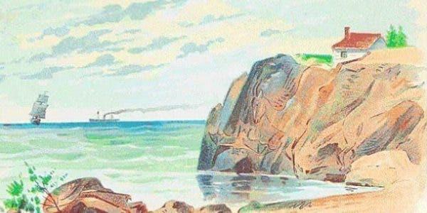 test-dobservation-trouvez-les-4-animaux-caches-sur-limage-en-moins-dune-minute