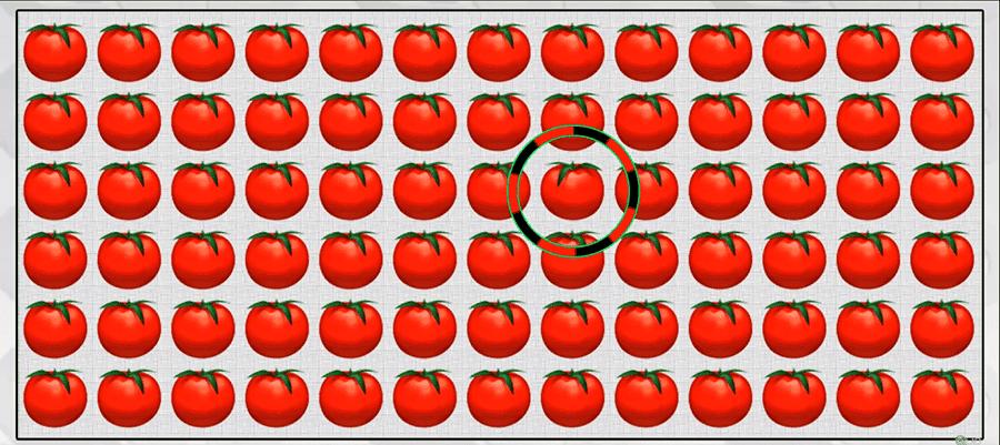 tomaterep