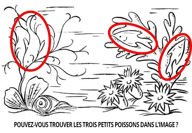 troispoissons