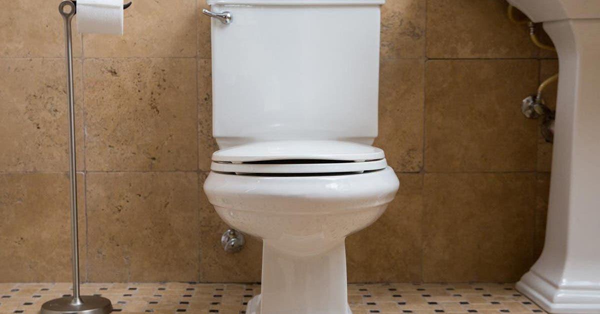 un-couple-qui-a-ete-surpris-en-plein-ebats-sexuels-dans-les-toilettes-dun-bar-a-ete-puni-par-la-police