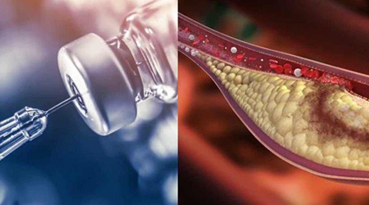 un-nouveau-vaccin-contre-le-cholesterol-pourrait-bientot-sauver-des-millions-de-vies