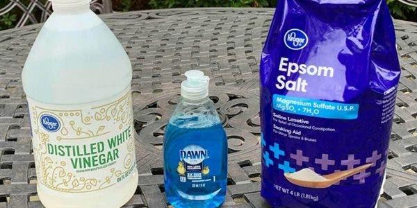 un-spray-contre-les-mauvaises-herbes-fait-maison-une-meilleure-alternative-aux-produits-chimiques