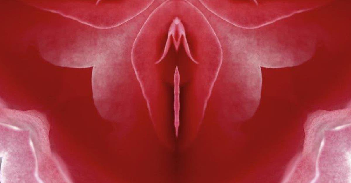 un-vagin-a-besoin-de-faire-lamour-pour-eviter-certains-troubles-de-sante