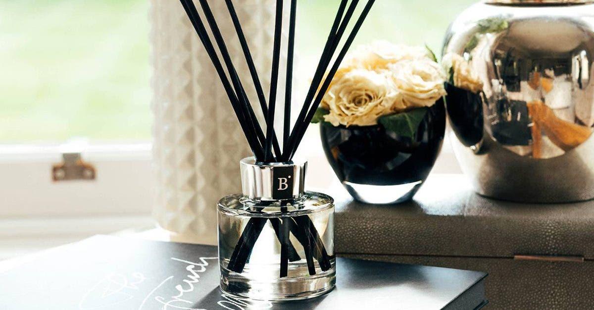 une-adepte-du-nettoyage-utilise-de-lassouplissant-dans-des-diffuseurs-pour-donner-a-sa-maisons-un-parfum-paradisiaque