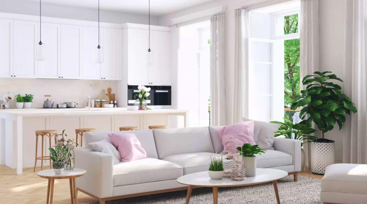 une-astuce-economique-pour-empecher-les-mouches-de-penetrer-dans-votre-maison