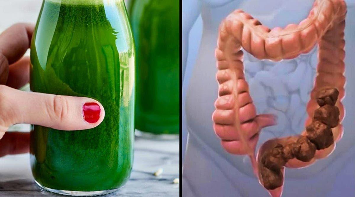 Une célèbre diététicienne présente 15 recettes de boissons drainantes et dépuratives pour perdre du poids