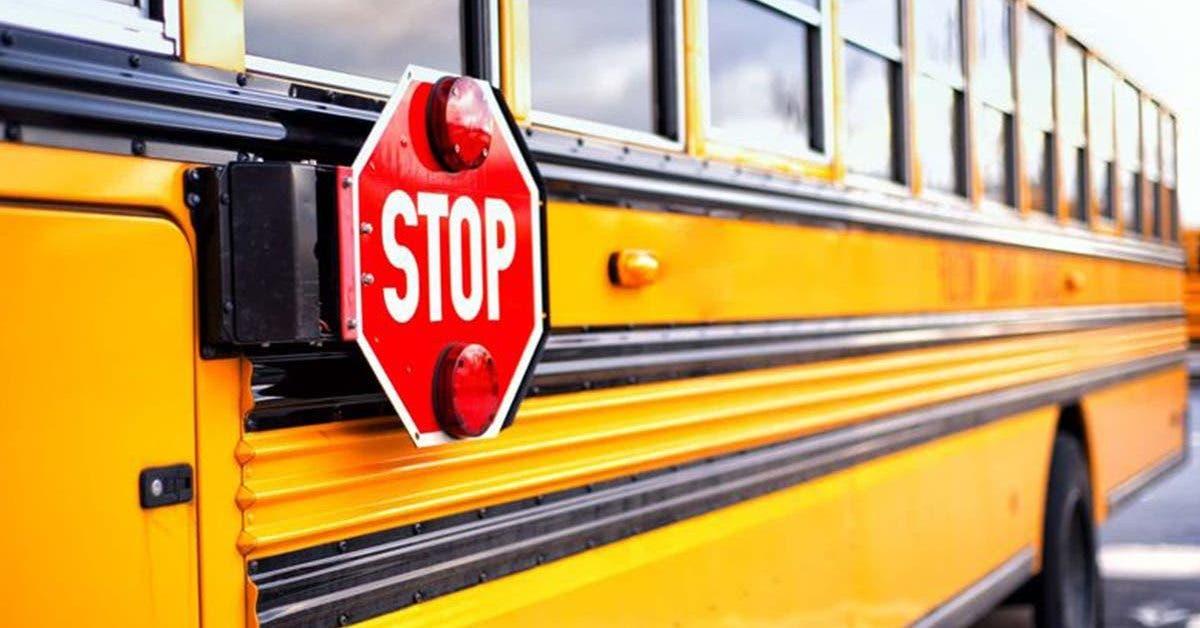 une-petite-fille-handicapee-est-violee-dans-un-bus-scolaire-par-des-eleves-sans-que-le-chauffeur-ne-reagisse