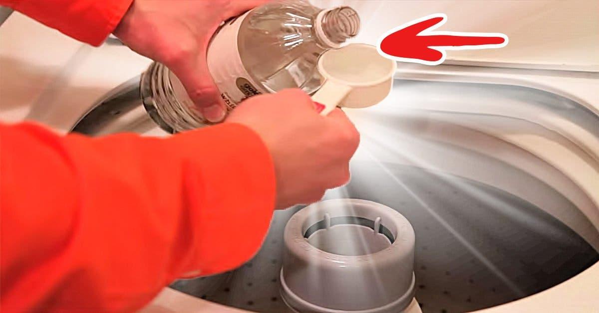 7 raisons essentielles d'utiliser le vinaigre blanc pour laver votre linge