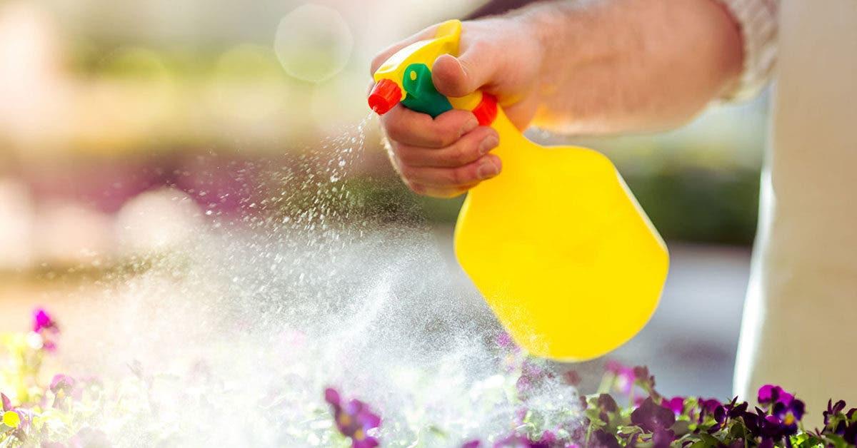 30 utilisations étonnantes du vinaigre pour votre jardin
