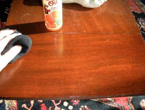 éloigner les araignées de votre maison