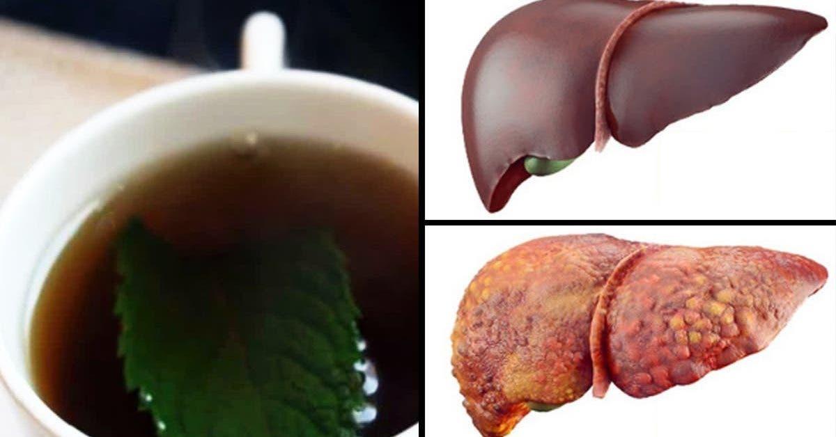 voici-5-boissons-pour-nettoyer-le-foie-et-eliminer