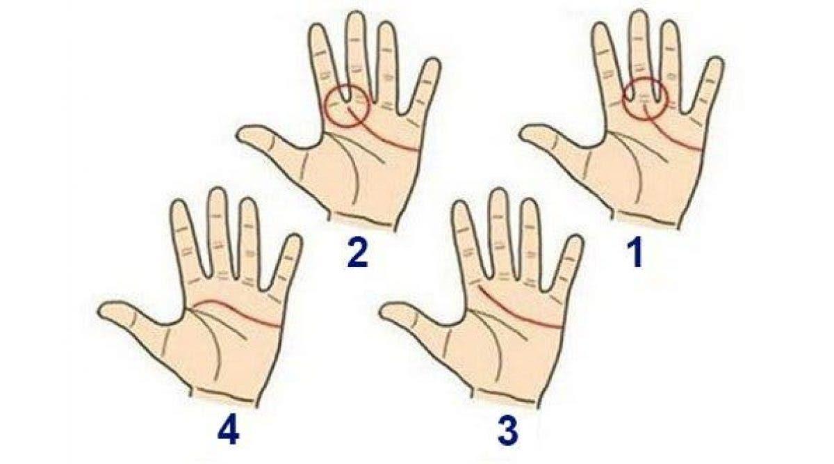 Voici ce que cette ligne sur la paume de la main révèle sur votre vie et votre personnalité