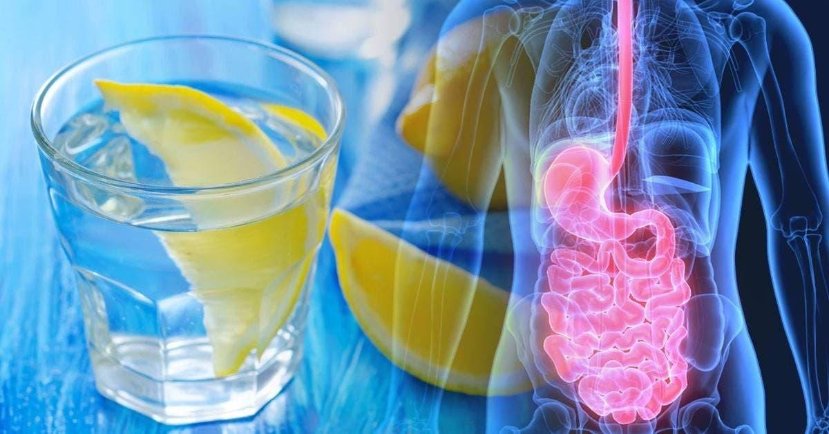 voici ce qui se produit lorsque vous consommez du citron tous les jours 1