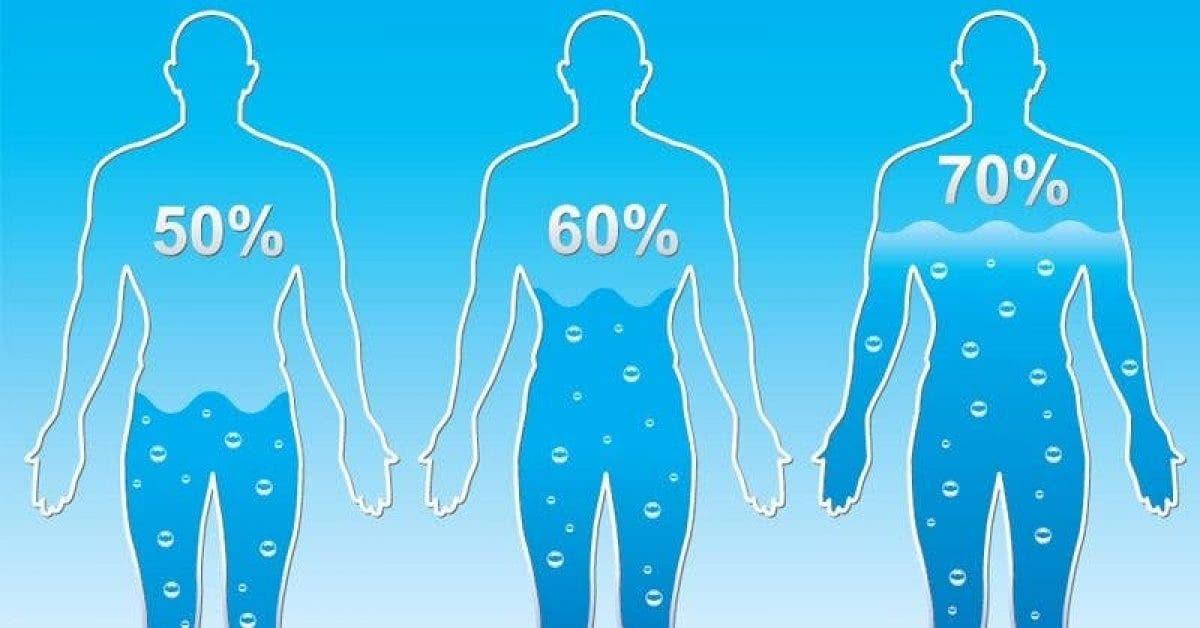 Voici combien d'eau vous devez boire par jour pour perdre du poids selon votre morphologie