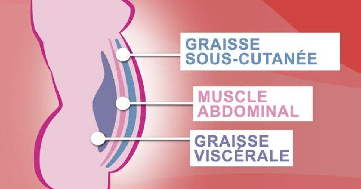 voici comment controler les 5 hormones 1