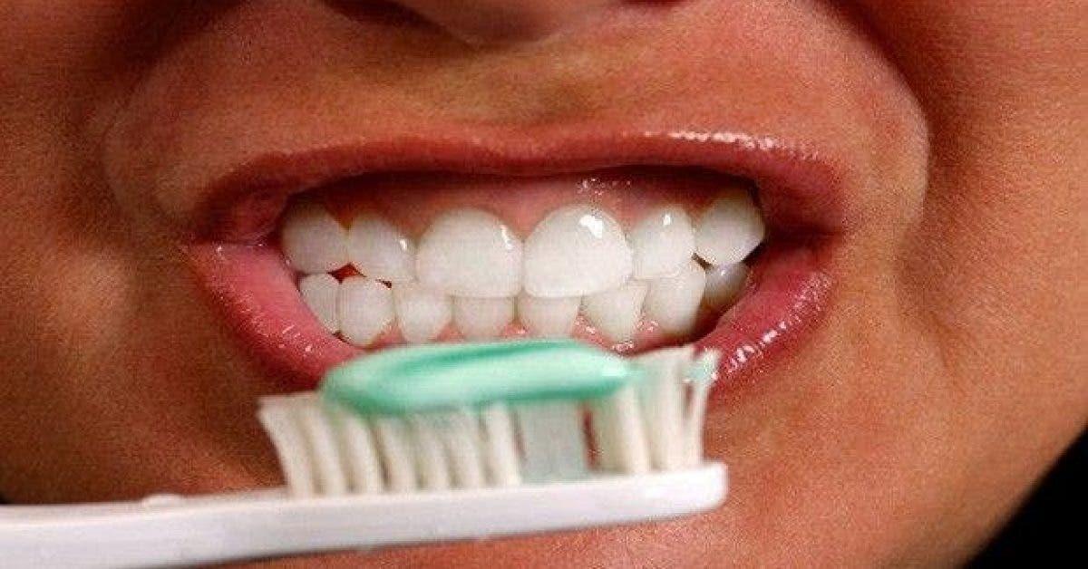 voici comment des matieres fecales se retrouvent sur votre brosse a dents 1