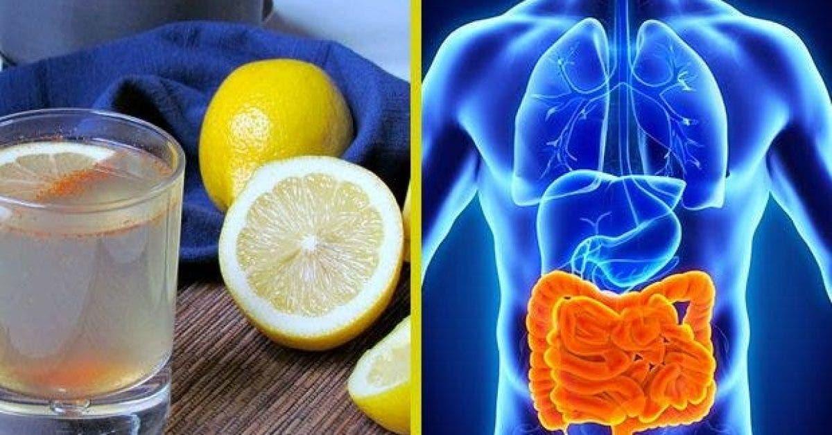 voici comment eliminer des kilos toxines et dechets de votre organisme 1