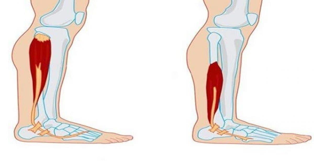 voici comment prevenir la perte musculaire et dautres maladies liees au vieillissement 1