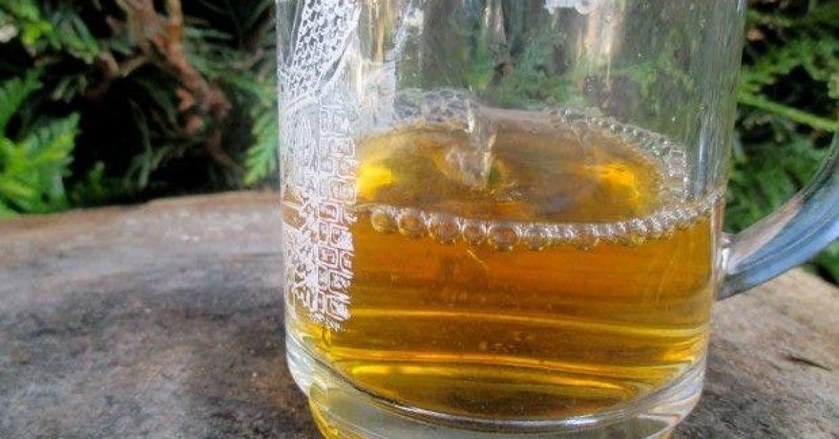 voici comment utiliser le vinaigre de cidre comme medicament 1