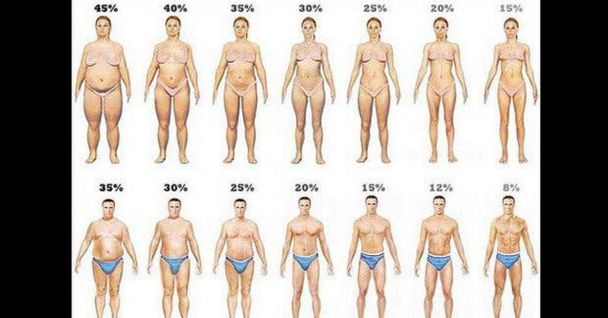 voici comment vous debarrasser de la graisse du ventre rapidement 1