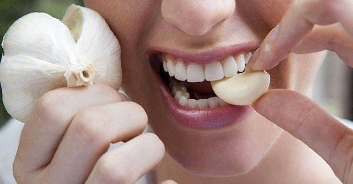 voici pourquoi vous devriez mettre une gousse dail dans votre bouche tous les matins 1