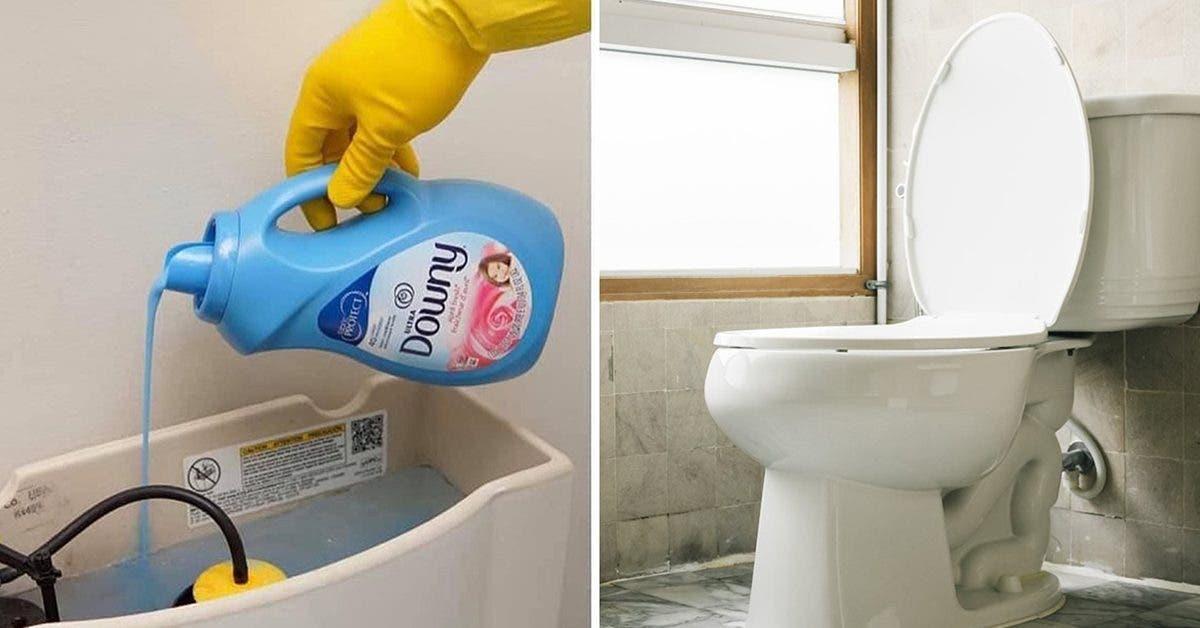 voici-pourquoi-vous-devriez-verser-de-lassouplissant-dans-vos-toilettes