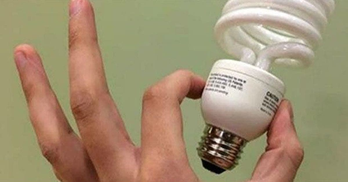 voici pourquoi vous devriez vous debarrasser des ampoules ecoenergetiques 1