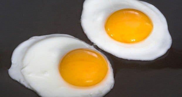 Vos ufs proviennent d 39 une poule malade voici comment le for Les maladies des poules