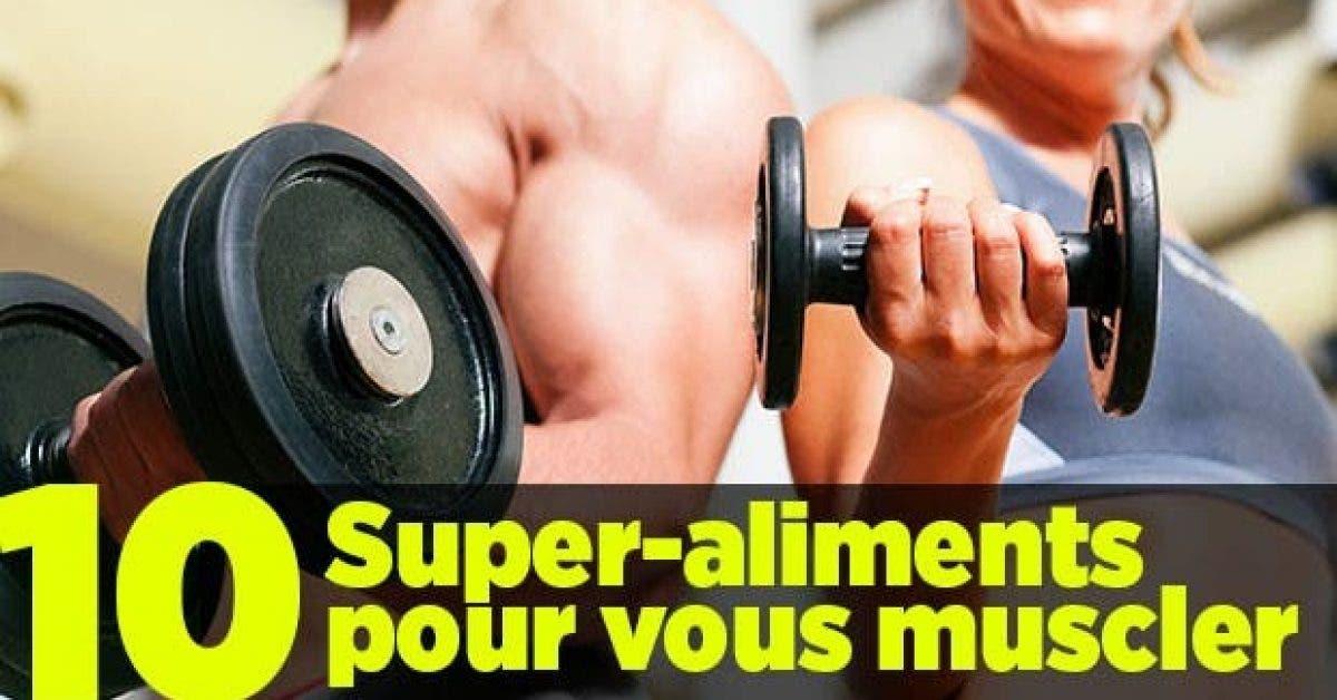 vous muscler11