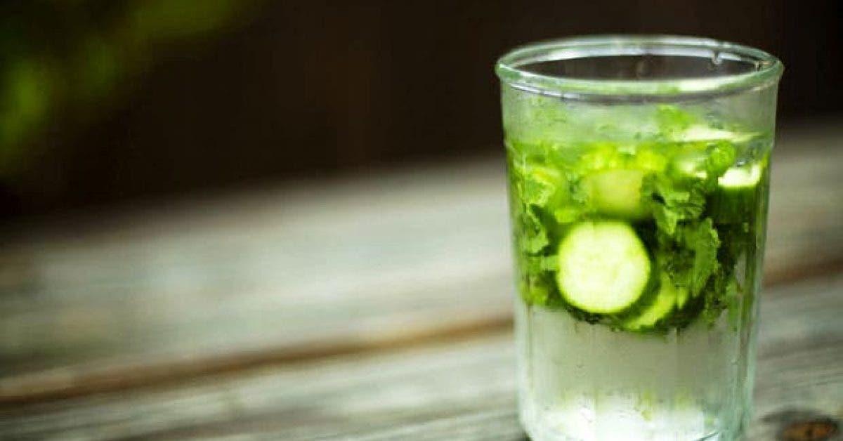 vous ne savez pas ce que vous ratez lorsque vous najoutez pas du concombre a votre eau 1
