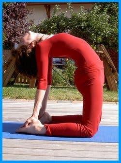 yogamrita ustrasana4 1