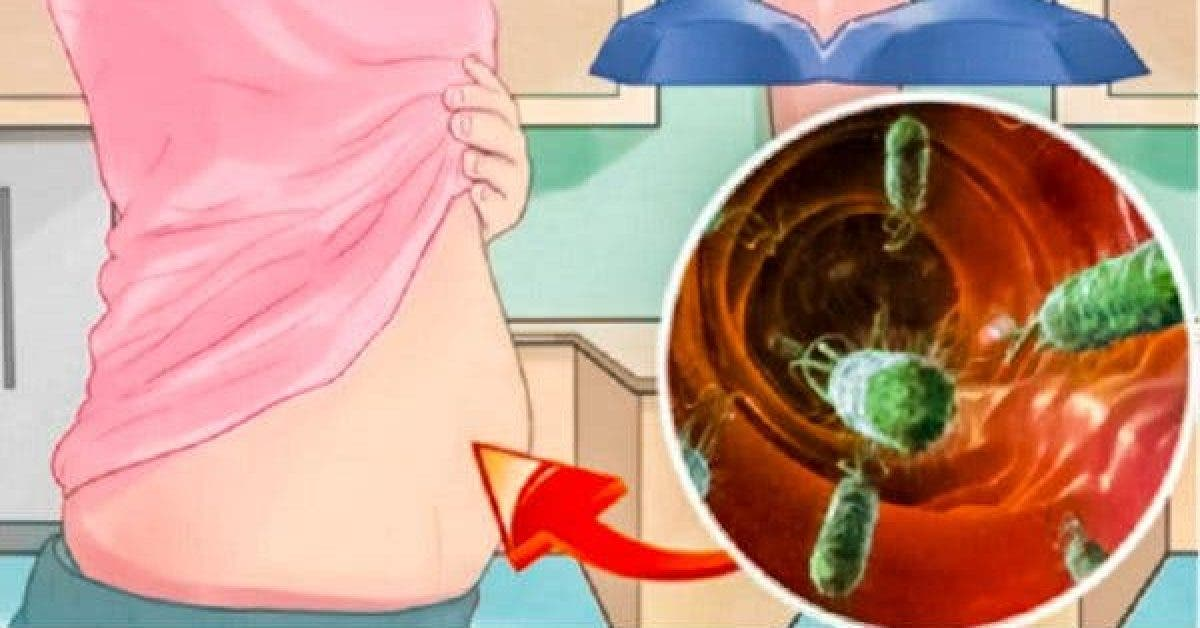 you have blowing stomach and gases you might have too much bacteria inside you sibo 600x320 2 1